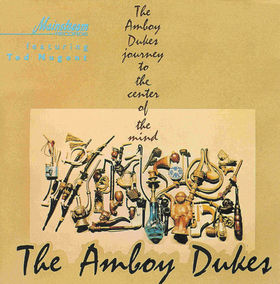 No.17 : Amboy Dukes - Journey To The Centre Of The Earth